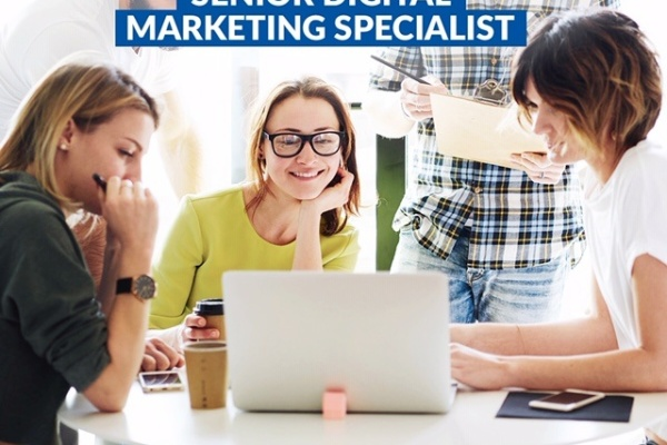 Specialist Marketing Iasi,specialist marketing,online marketing specialist,specialist seo, https://www.seoadwords.ro/
